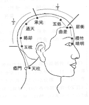 Meridians and Acupuncture points