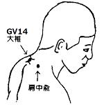 GV14 大椎