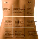 腹痛-病気・症状と治療