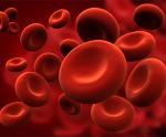 貧血-病気・症状と治療