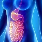 腸炎-病気・症状と治療