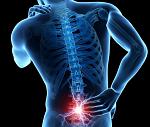 腰痛(下肢痛)-病気・症状と治療